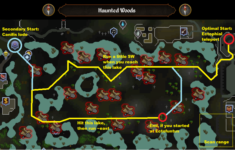 Runescape - Haunted Woods - Elite Clue Scan Route